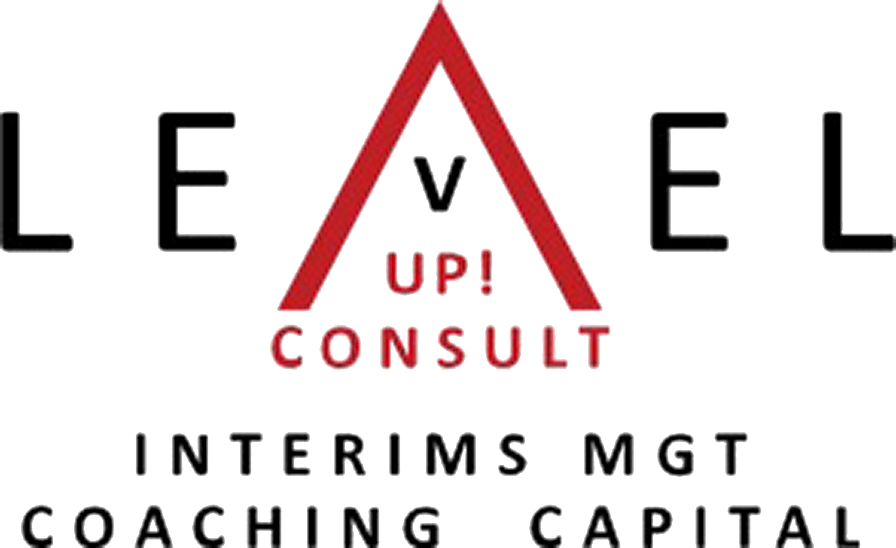 LevelUp Consult Logo