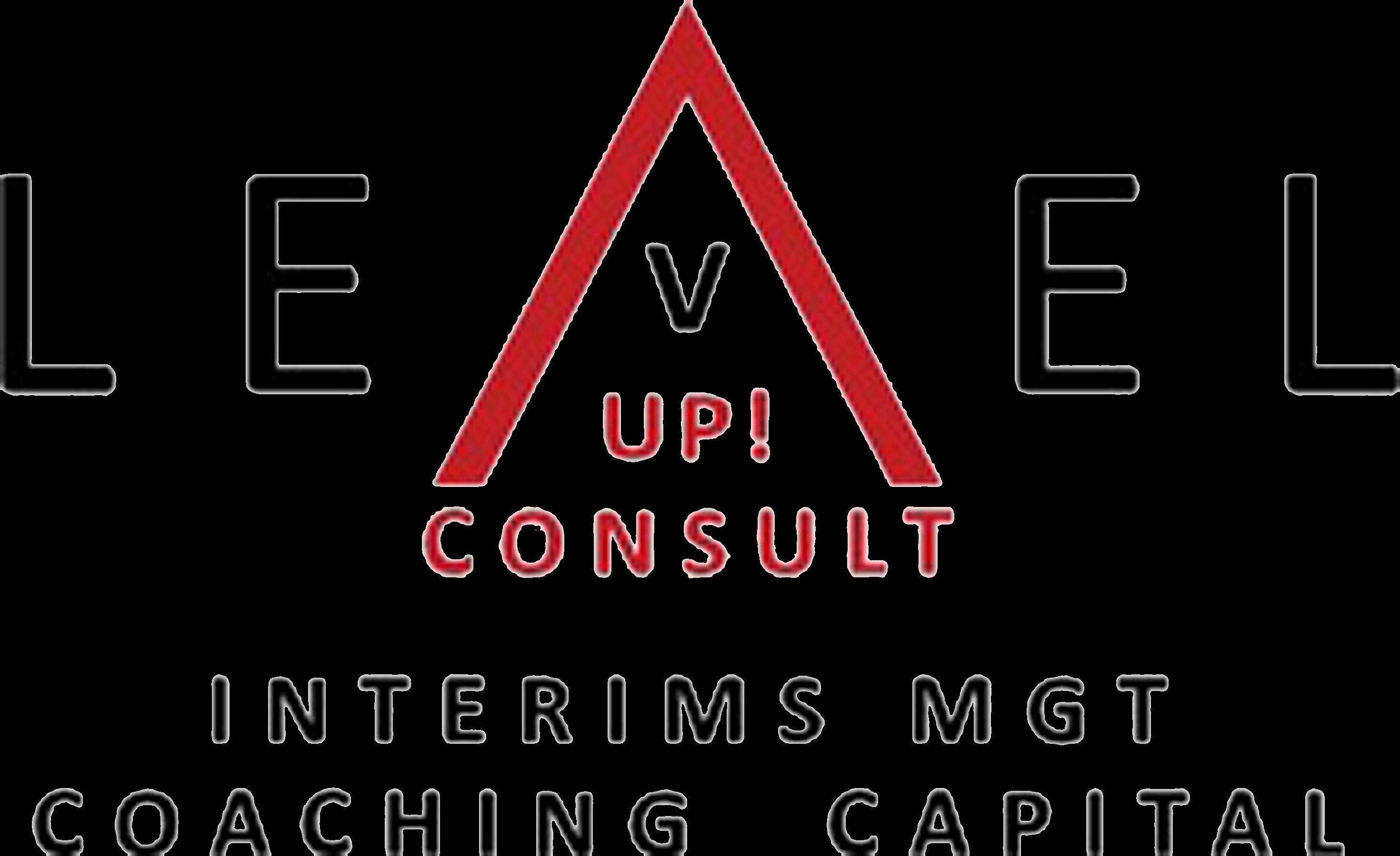 LevelUp Consult Logo